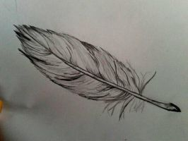Feather by v-ermilli0n