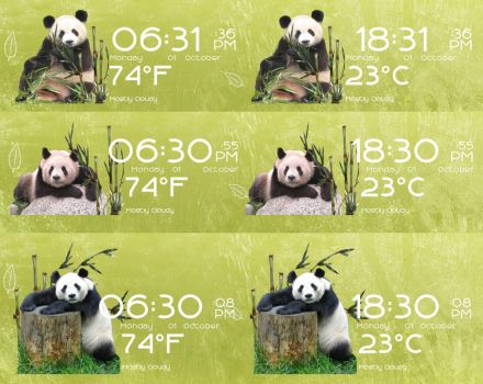 Pandas Time Date and Weather for Rainmeter by ionstorm01