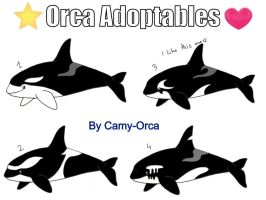 Orca Adoptables OPEN (two left!) by Camy-Orca
