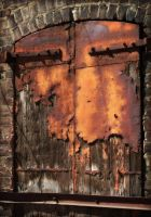 Rusty Door by tragica1
