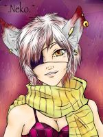 1st commission -colorful-gray- :.Neko.: by Manny9591