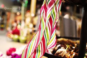 Peppermint Winter by love-in-focus-Photo