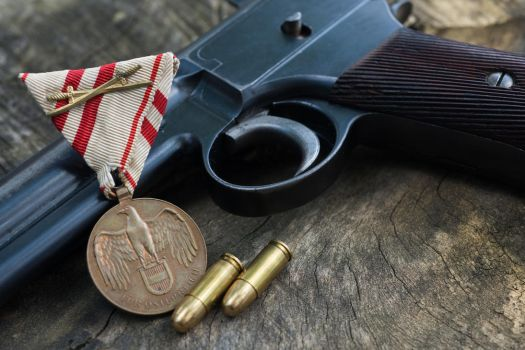 Roth Steyr with Commemorative War Medal by PLutonius