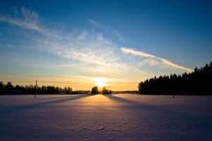 Suomi sunrise and trees 2 by Pasquali
