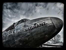 Vagrant by Dogbytes