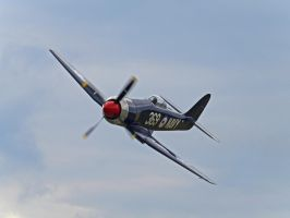Sea Fury by davepphotographer