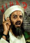 Obama bin Laden by funkwood
