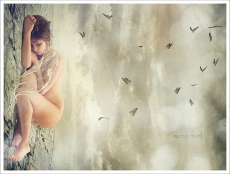 .dreams and butterflies. by krylty