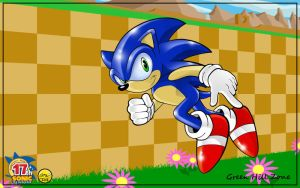Sonic 17 by TheStiv