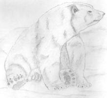 polar bear by tweettweet0607
