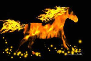 Fire Horse - first photomanip by SparklersOasis
