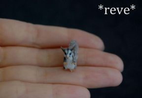 OOAK Handmade Miniature Sugar Glider Sculpture by ReveMiniatures