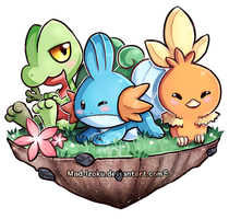 [ Hoenn starters] by Mad-Izoku