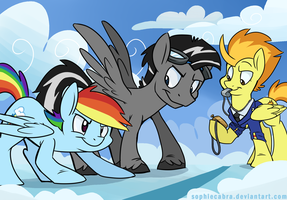 Commission - Silverwing vs. Rainbow Dash by sophiecabra