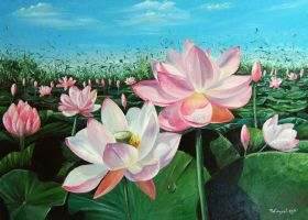 Lotus Field by chebot