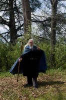 2014-04-28 Blue Cloak 37 by skydancer-stock