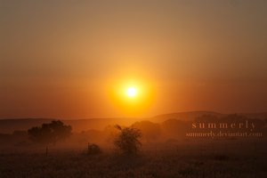 Namibia - XVIII by Summerly
