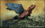 Dragon by TinyStock