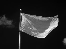 Infrared Flag by redtailhawker