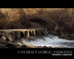 Cataract Gorge, 2007 by parablev
