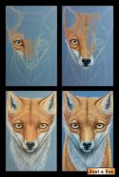 Borning of the lonely fox by kshandor