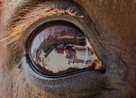 I in the eye... by clochartist-photo