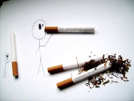 no smoking by NobleEarth
