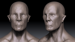 First Asymmetric Face (W.I.P) by nogard00