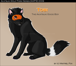 AWFS - Tobi by Mistrel-Fox