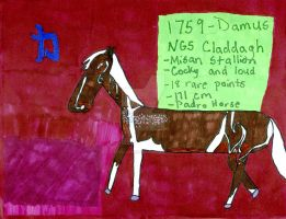 1759 NGS Claddagh- Misan Stallion by StyxxsOmega
