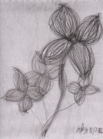 Strands of Flowers by Prom15e13elieve10ve
