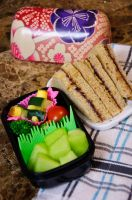 Peanut Butter and Blueberry Jam Bento by Demi-Plum