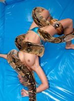 Snake 3 by wsaef