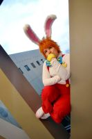 Roger Rabbit by LoveAndHate123