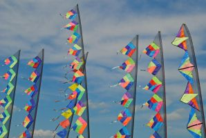 Banners by LucieG-Stock
