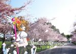 Sakura in the park by MuDDiTToX