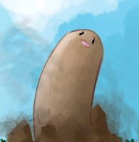 I Choose you, Diglett! by allocen