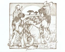 African Wild Dogs by Agaave