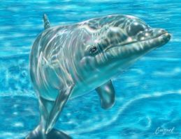 How to Save Dolphins by emizael