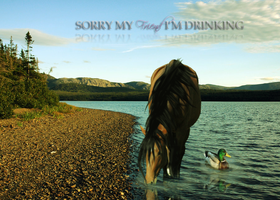 Sorry my friend i'm drinking by Snoetie-Famous
