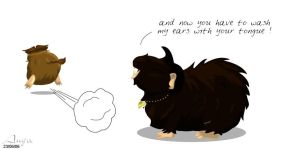 TP : a cavy life part 3 by anya1916