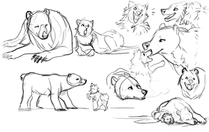 Polar Bears and Sled Dogs by Mekko-chan