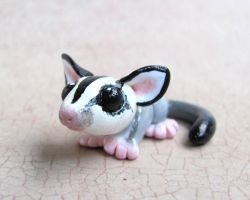 Custom Sugar Glider by DragonsAndBeasties