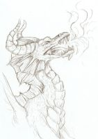 Dragon Sketch by Agaave