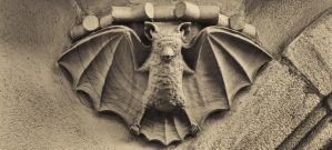 the bat of bamberg by Ulliart