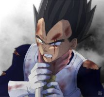 Vegeta and Freeza by Ume-Sakura
