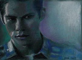 Stiles in dry pastels by ihni