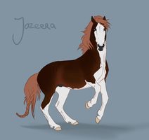 Flash Auction - Jazeera by abosz007