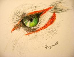 Eye sketch by SarurunKamui