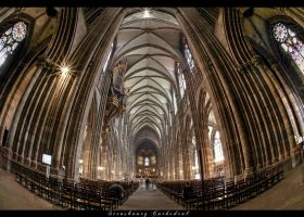 *Strasbourg Cathedral*2 by erhansasmaz